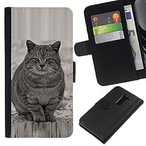 Planetar® Modelo colorido cuero carpeta tirón caso cubierta piel Holster Funda protección Para LG G2 D800 ( Lindo gato gordo Gris Blanco Furry Bestia )