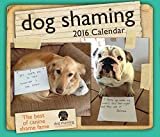 Dog Shaming 2016 Day-to-Day Calendar by Pascale Lemire (2015-07-21)