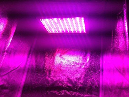 New Hydroponic Grow Room - Complete Grow Tent - 300w LED Grow Light with IR Hydroponic System 3