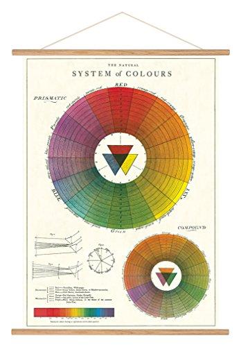 (Cavallini Papers & Co. Cavallini Vintage Color Wheel Hanging)