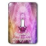 3dRose Spiritual Awakenings Meditation - Prayer and Meditation motivational art - Light Switch Covers - single toggle switch (lsp_290262_1)