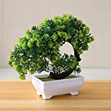 Osierr6 plantas artificiales bonsáis, pequeñas plantas de árbol, macetas de plástico, adornos, para mesa, hogar, plantas falsas, hotel, jardín, decoración, emulación, simulación, decoración, Verde, free size