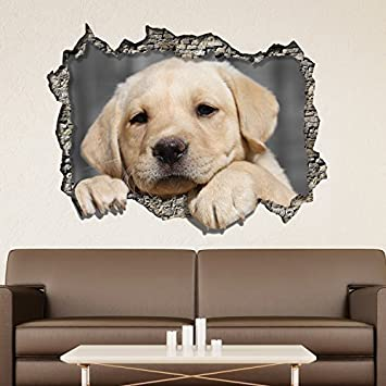63828ab019f11 wallflexi Autocollant Mural vue à travers le mur 3D chien - Art amovible  Décalques nurserie jardin