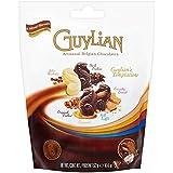 Guylian belgischen Schokoladen große Versuchungen Beutel 522g