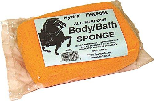 Body Hydra Sponge - SPONGEBODYSQUAREFSB2