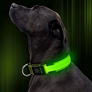 Illumifun LED Dog Collar, USB Rechargeable Light Up Collar, Adjustable Nylon Flashing Glowing Dog Collar Make Your Dogs Seen& Safe in The Dark(Green, Large)