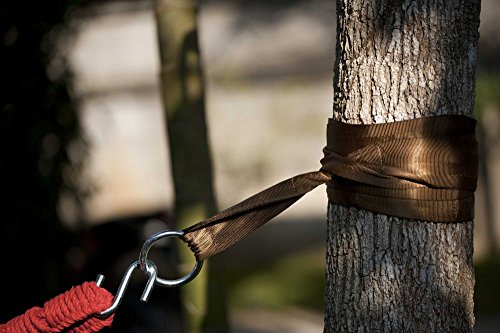 Cheap Hammock Sky Hammock Tree Straps by Best Extra Long Hanging Straps for Camping & Travel – Heavy Duty 1200+ Lbs Capacity – Superior Polyester Material Works with All Hammocks & Larger Trees [Brown]