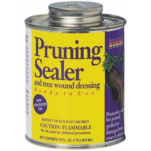 PRUNING SEALER WITH BRUSH-TOP - 912154