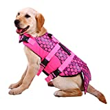 #1: Dog Life Jackets, Ripstop Pet Floatation Life Vest for Small, Middle, Large Size Dogs, Dog Lifesaver Preserver Swimsuit for Water Safety at the Pool, Beach, Boating (Large, Pink Mermaid)