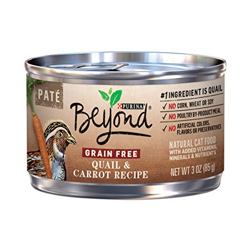 Purina Beyond Grain Free, Natural Pate Wet Cat Food; for sale  Delivered anywhere in USA