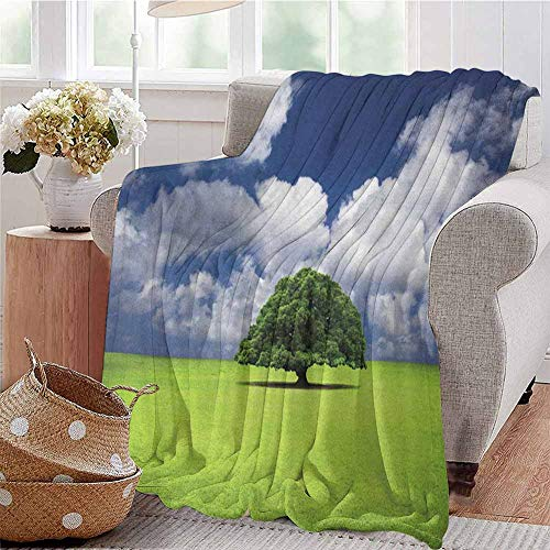 Luoiaax Nature Commercial Grade Printed Blanket Single Old Tree on Wide Grass Field Fluffy Clouds Sunny Summer Day Cloudscape Print Queen King W70 x L70 Inch Green Blue