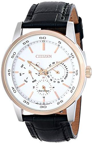 Citizen Eco Drive BU2016 00A Two Tone Leather