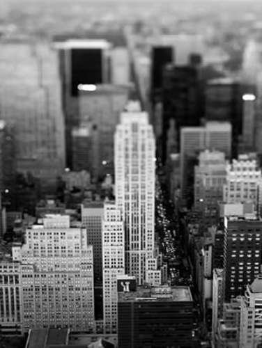 Fifth Ave NYC by Tracey Telik - 23