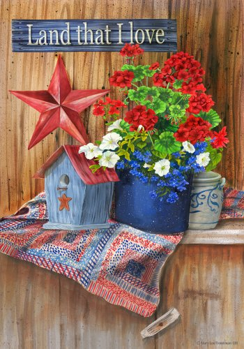 Land That Love Americana Decorative