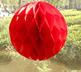 Daily Mall 10Pcs 8 inch Art DIY Tissue Paper Honeycomb Balls Party Partners Design Craft Hanging Pom-Pom Ball Party Wedding Birthday Nursery Decor (Red Color)