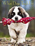 What Dogs Teach Us 2019 Engagement Calendar by