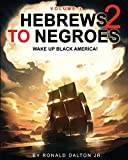 img - for HEBREWS TO NEGROES 2: WAKE UP BLACK AMERICA! Volume 1 book / textbook / text book