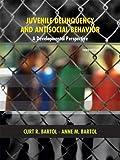 Juvenile Delinquency and Antisocial Behavior: A