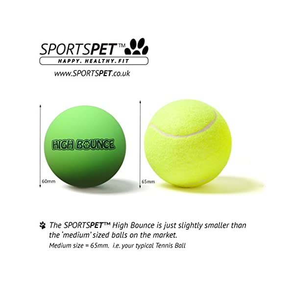 SPORTSPET High Bounce Rubber Dog Balls 3 pack 7