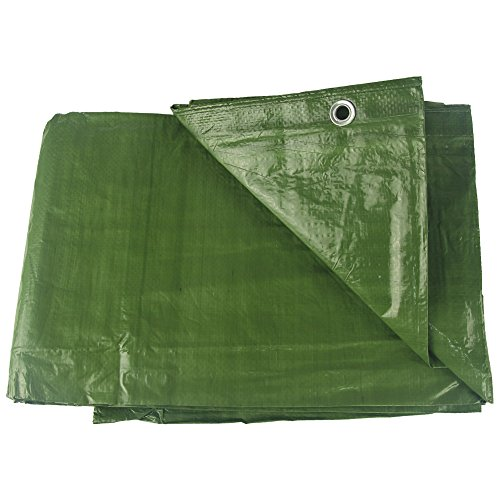 Waterproof Tarp Hanjet Camping Garden Covering Durable Tarpaulin Blue/Army Green