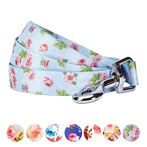 Blueberry Pet Durable Spring Scent Inspired Rose Blossom Floral Print Pastel Blue Dog Leash 5 ft x 5/8'', Small, Leashes for Dogs by Blueberry Pet