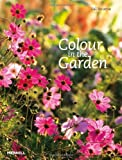 Colour in the Garden