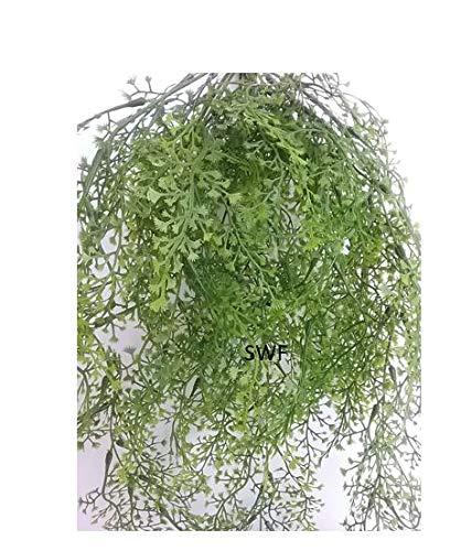 24-Maidenhair-Fern-Hanging-Bush-Greenery-Wedding-Flowers-Home-Decor