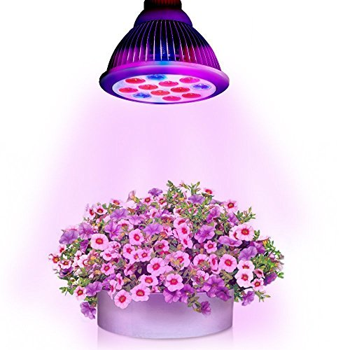 Happy Hours - Newest High Efficient 12W LED Plant Grow Bulb Light with 3 Blue and 9 Red for Flower, Vegetable, Hydroponic Aquatic Plants, Indoor Garden and Greenhouse