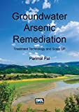 Groundwater Arsenic Remediation : Treatment Technology and Scale Up, Pal, Parimal, 178040672X
