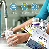 Drinking Water Test Kit for Home Tap and Well Water