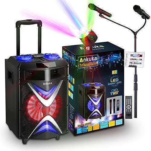 Portable Bluetooth Karaoke Machine