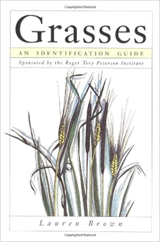Grasses An Identification Guide Sponsored By The Roger Tory