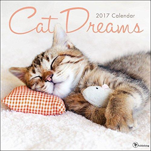 TF Publishing 2017 Cat Dreams Wall Calendar (17-1021)