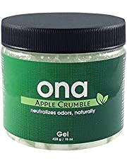 Elimina Odori - ONA Gel Apple Crumble Antiolor (428g)