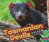 Tasmanian Devils, Lyn A. Sirota, 1429645067