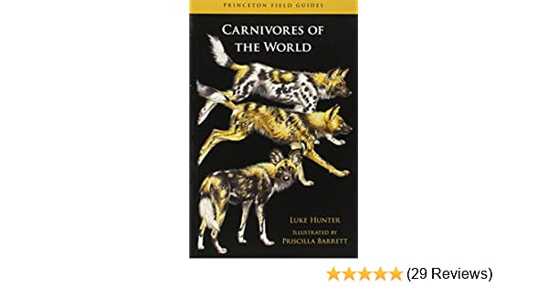 Carnivores Of The World Princeton Field Guides Luke Hunter