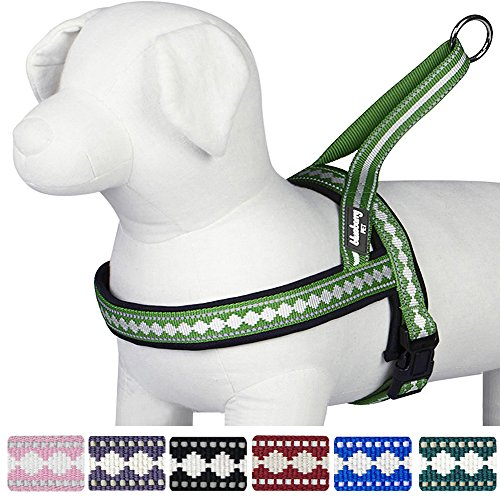 "Blueberry Pet 7 Colors Soft & Comfy Jacquard Padded Dog Harness, Chest Girth 21.5"" - 27.5"", Moss Green, Medium, No Pull Reflective Adjustable Harnesses for Dogs"