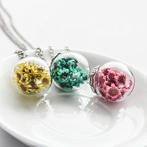 1-pcs-random-color-sunshine-airy-real-colorful-flowers-glass-ball-pendant-necklace-new-wish-bottle-p