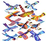 Rhode Island Novelty Bird Gliders Party Favors, Science Toy (48 Pack)