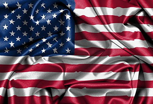 (LFEEY 10x8ft American Flag Background Child Kids Family Portrait Parade Photoshoot Studio Prop 4th of July Backdrops for Photography)
