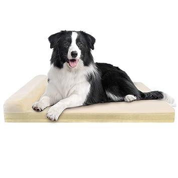 Amazon.com: JoicyCo - Colchón de espuma para cama de perro ...