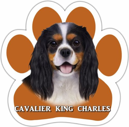 King Charles Cavalier, Tri Color Car Magnet With Unique Paw Shaped Design Measures 5.2 by 5.2 Inches Covered In UV Gloss For Weather Protection Cavalier King Toy