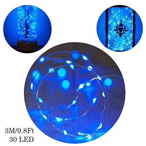 3M/9.8Ft 30 LED Copper Wire String Lights, GuanYuanGuang Fairy Firely Battery Operated Micro Lights for Girls Room, Valentines Day, Indoor Decor (Blue)