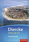 Diercke Erdkunde - Ausgabe 2015 für Gymnasien in Niedersachsen G9: Arbeitsheft 5 / 6