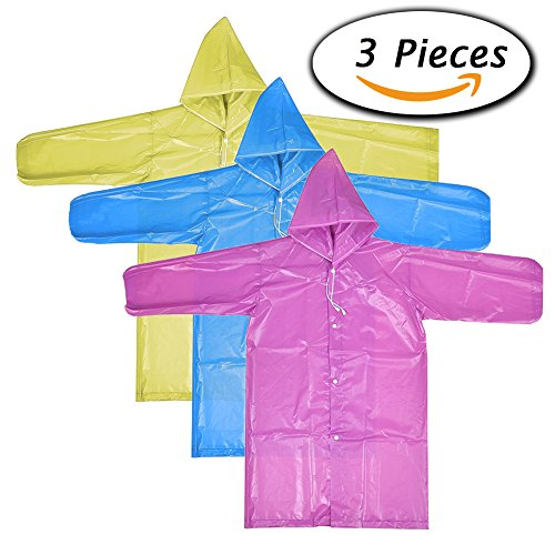Portable Raincoat with Hood and Sleeves