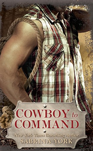 Porsche Stud - Cowboy to Command (Stripped Down Book 2)