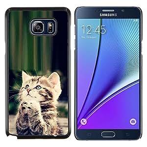 EJOOY---Cubierta de la caja de protección para la piel dura ** Samsung Galaxy Note 5 5th N9200 ** --Gatito lindo Orar Dios cristiano dulce