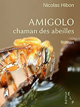 Amigolo, chaman des abeilles (Romans) by [Hibon, Nicolas]