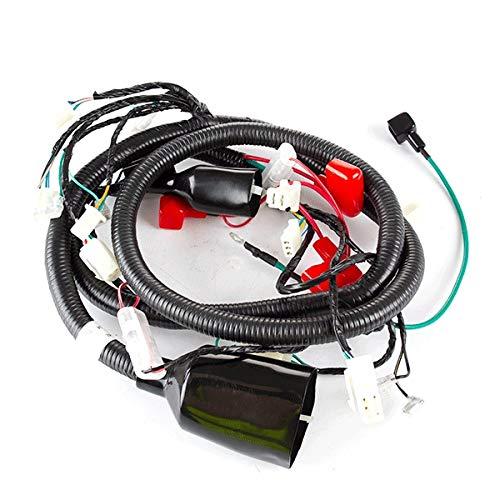 Main Wiring Loom (WRLM183):