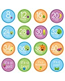 Tiny Ideas Pregnancy Milestone Photo Sharing Belly Stickers, 16 Stickers Included